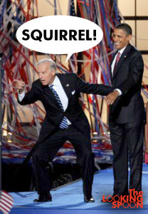 biden_distracted_squirrel