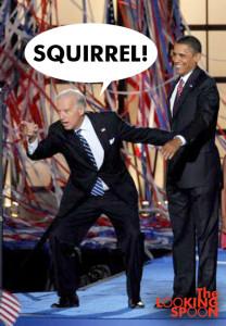 biden_distracted_squirrel